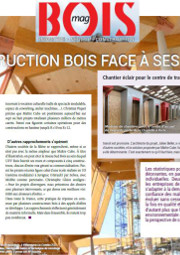 Article Bois Mag